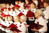 Program XIII Festiwalu Chórów i Chórów, Kabaretów i Zespołów Seniora